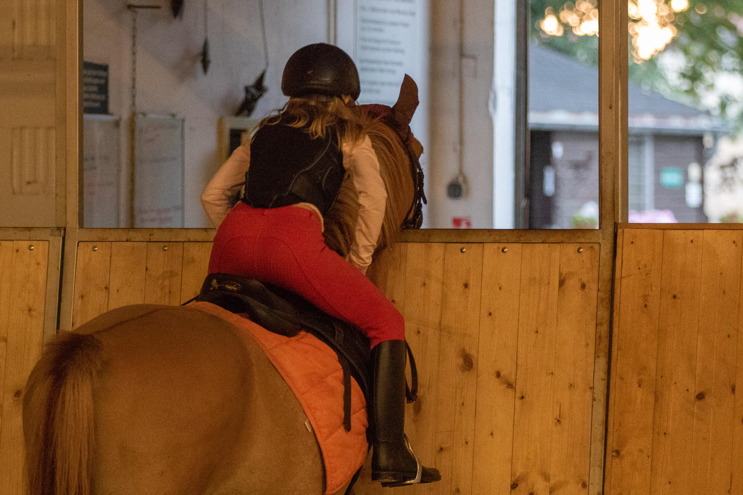 Pferde-001-5X6A8639